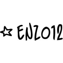 1455_1455_enzo12llc-210-2