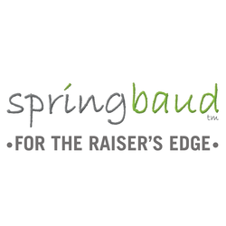 2961 2961 springbaud for the raisers edge and mailchimp 1000px
