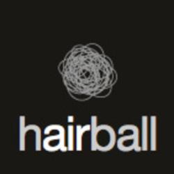 431_431_hairball